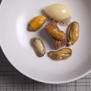 Pork Starter with mussels